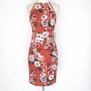 NWT Iris Basic floral dress